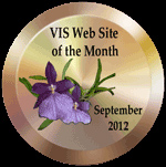 VIS Web Site of the Month